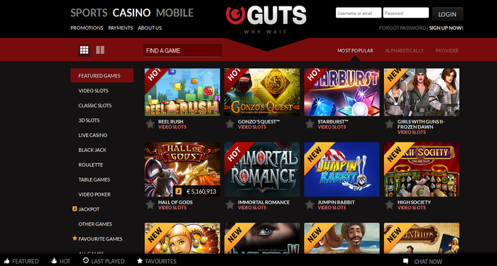 guts review casino